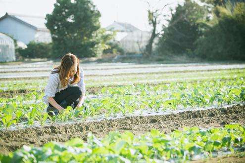 挑戦を育む土壌