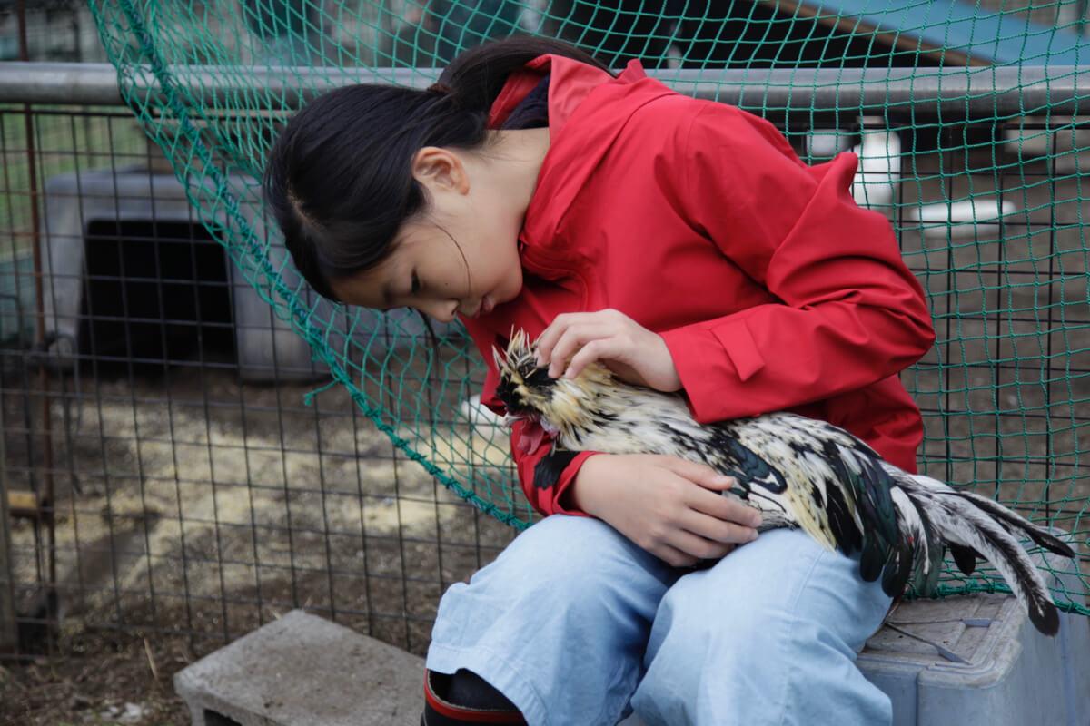 動物たちと触れ合わナイト