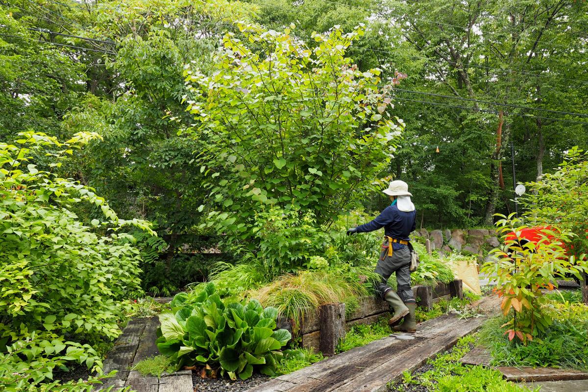 自然のなかにつくる自然に触れる庭