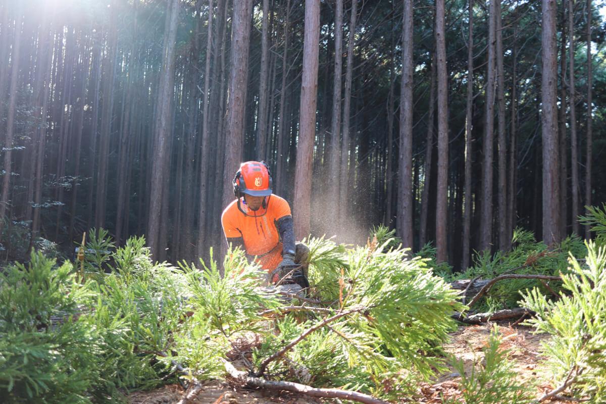 森の未来を考えナイト