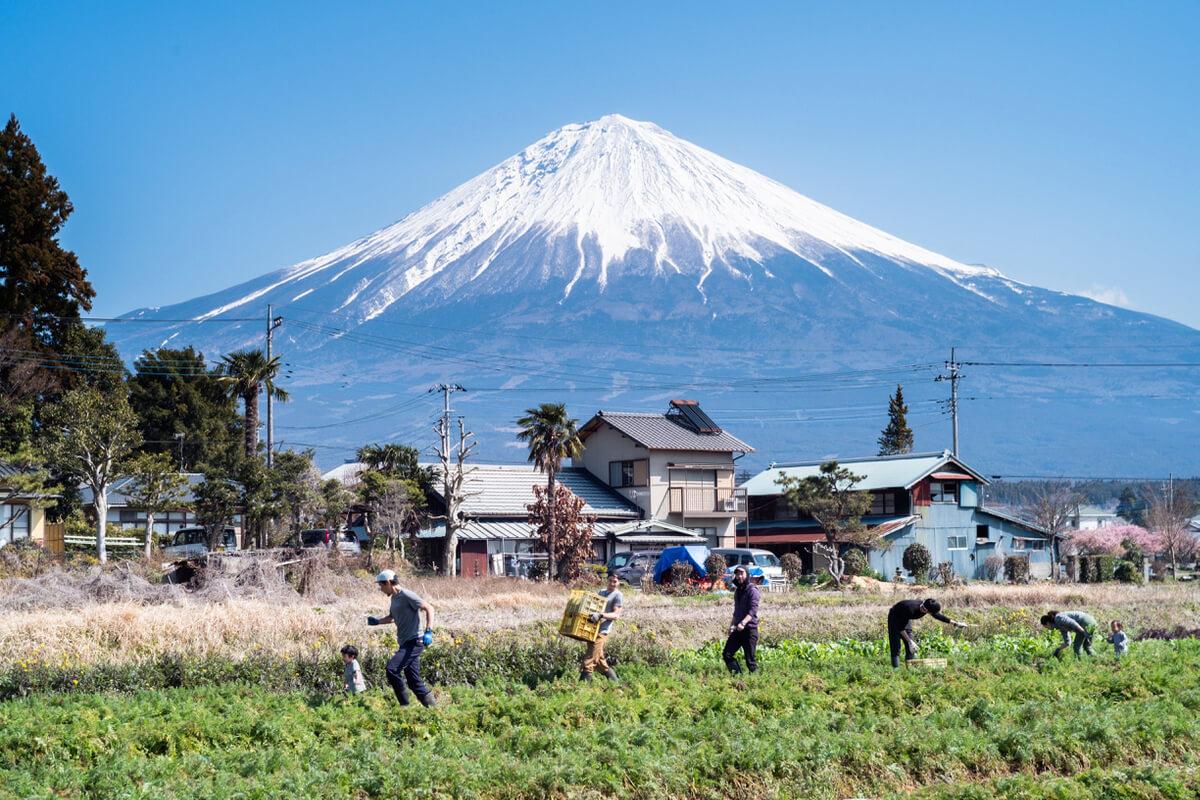 富士山麓をフィールドに自然と人をつなぎ遊ぶように働く