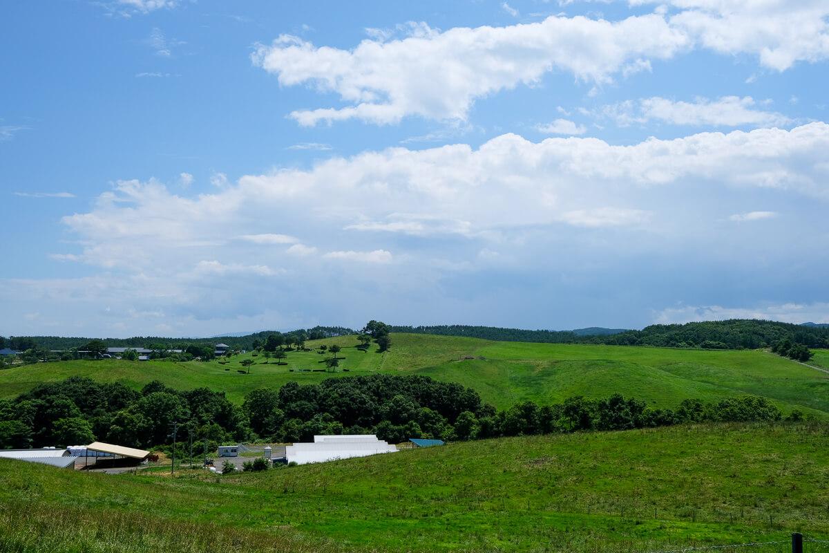海の青と高原の緑あとは人次第でいろんな絵が描けそうなまち